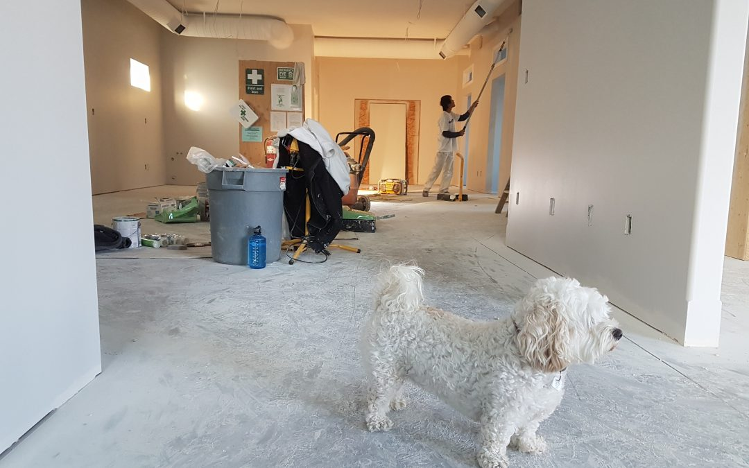 Things To Know Before An HDB Renovation